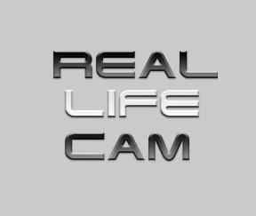 RealLifeCam